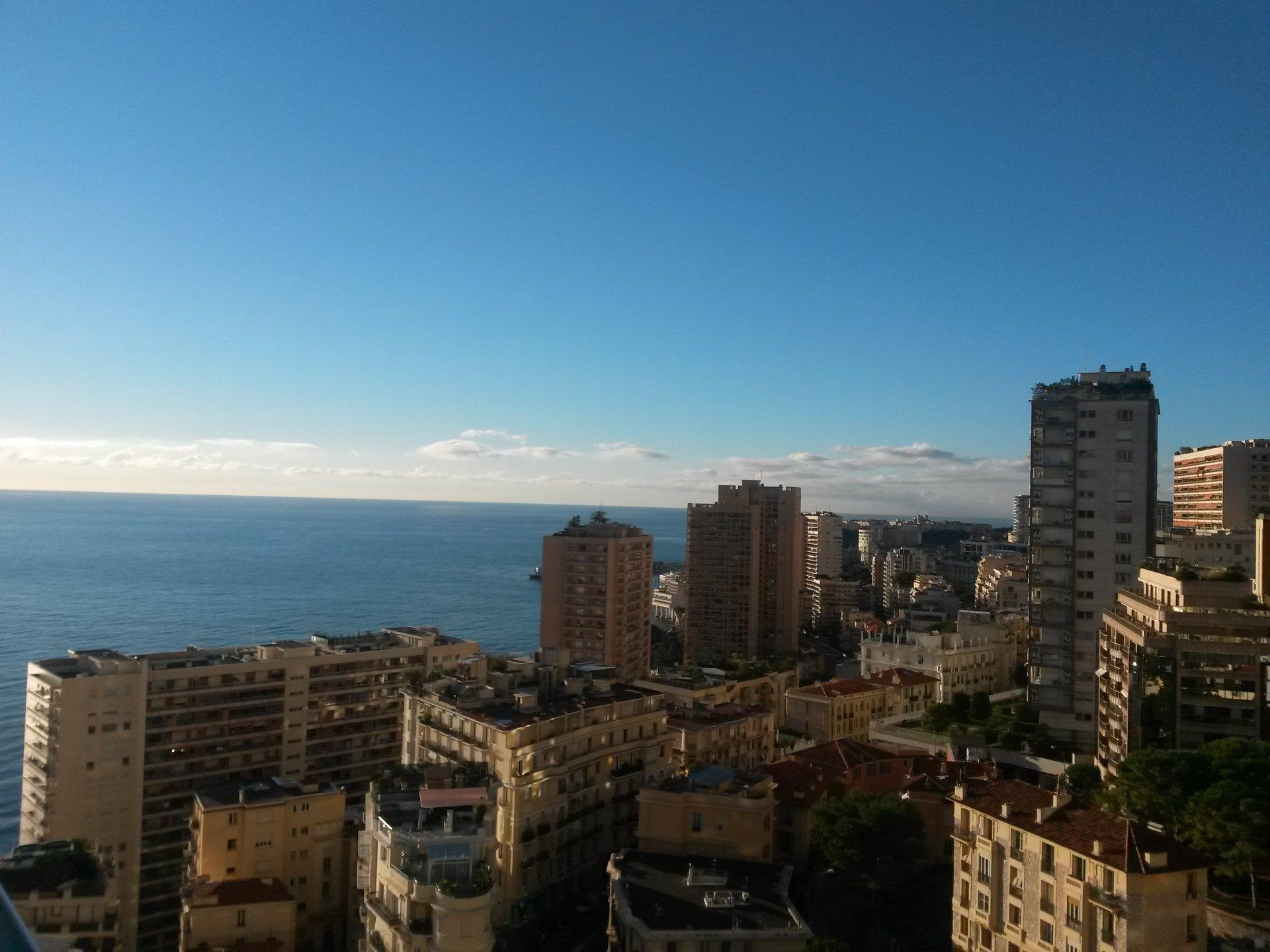 Affitto Monolocale Monaco La Rousse