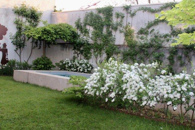 Maison de ville CENTRE BOURG EN BRESSE avec piscine