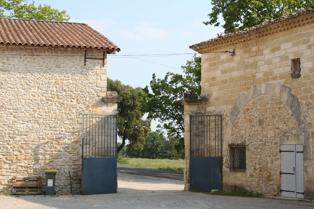 Sale Vineyard property - Montpellier