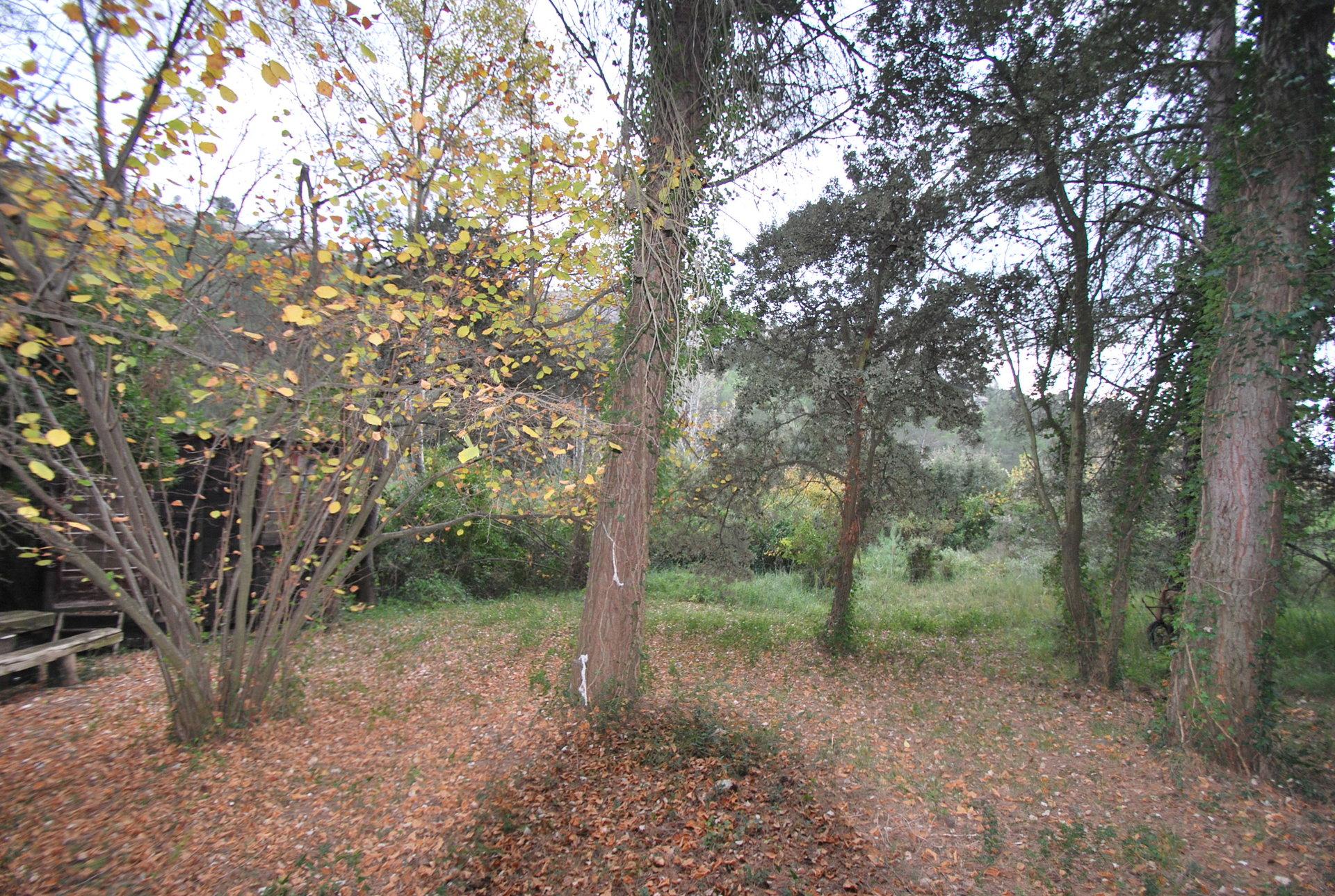 Sale Not constructible land - Fontvieille
