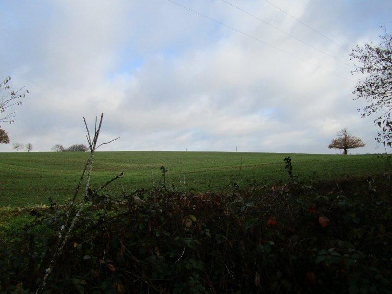 Charmant vrijstaand plattelands huis te koop in Bourgogne.