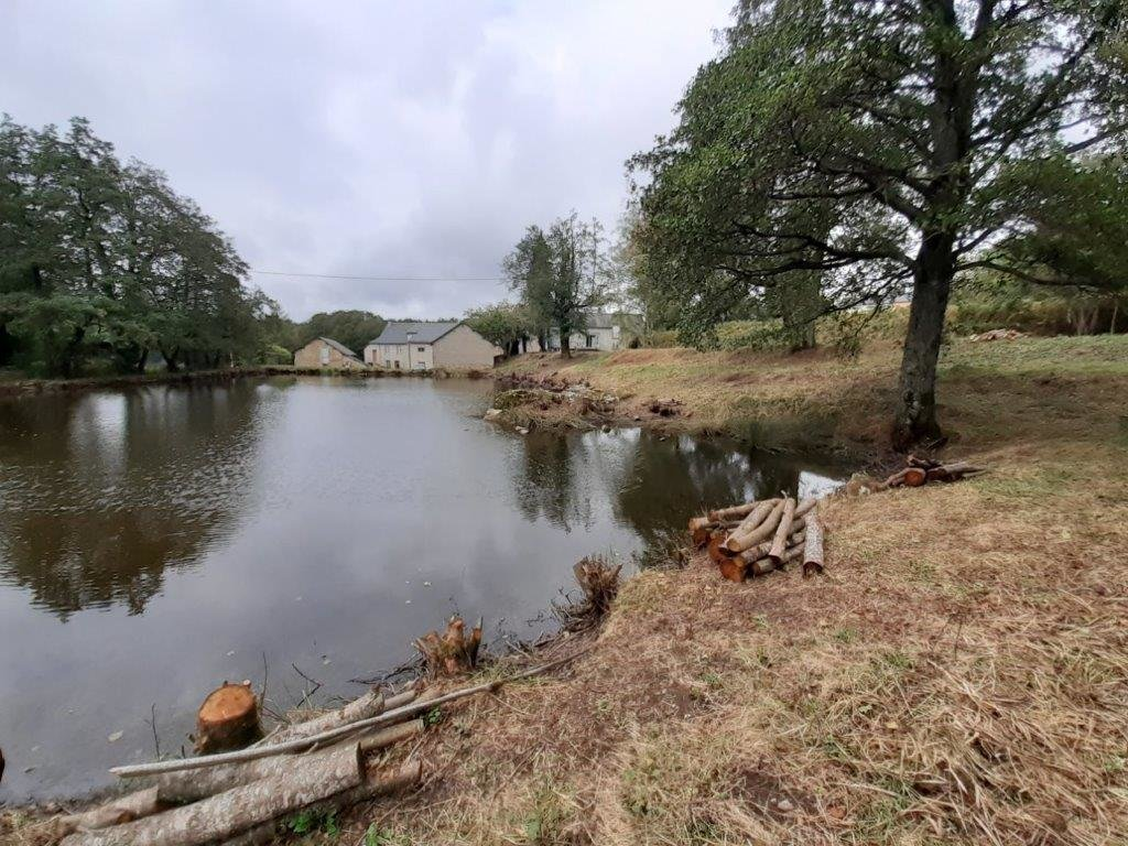House to renovate with lake for sale in Arleuf in Burgundy