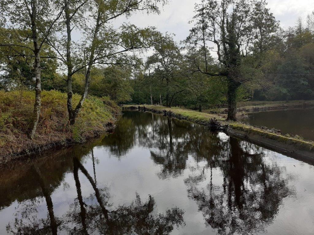 Te renoveren woonhuis met meer te koop in Arleuf in de Bourgogne