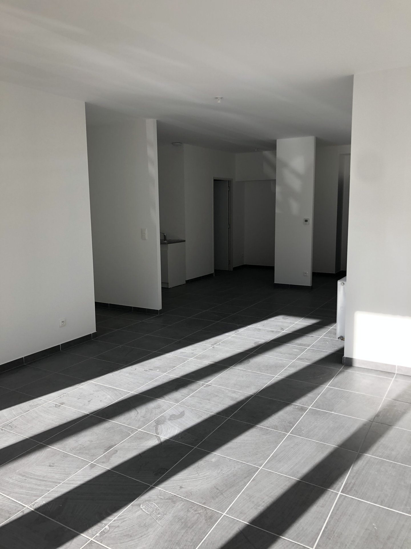 CLOS BAYARD SAINT-CHAMOND T4 100m2 avec terrasse