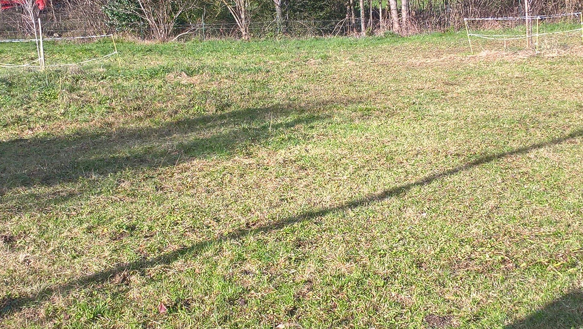 En Barousse, terrain constructible clôturé