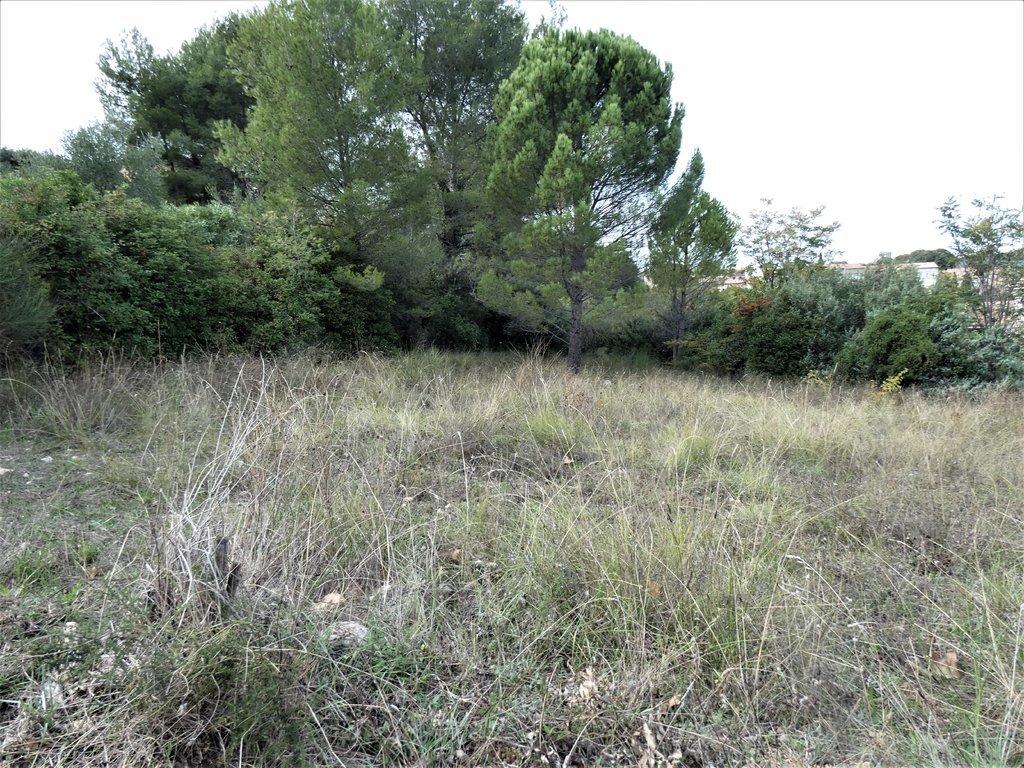 Sale Plot of land - Flayosc