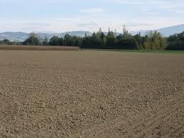 Vente terre labourable, pâture et bois à Hobscheid