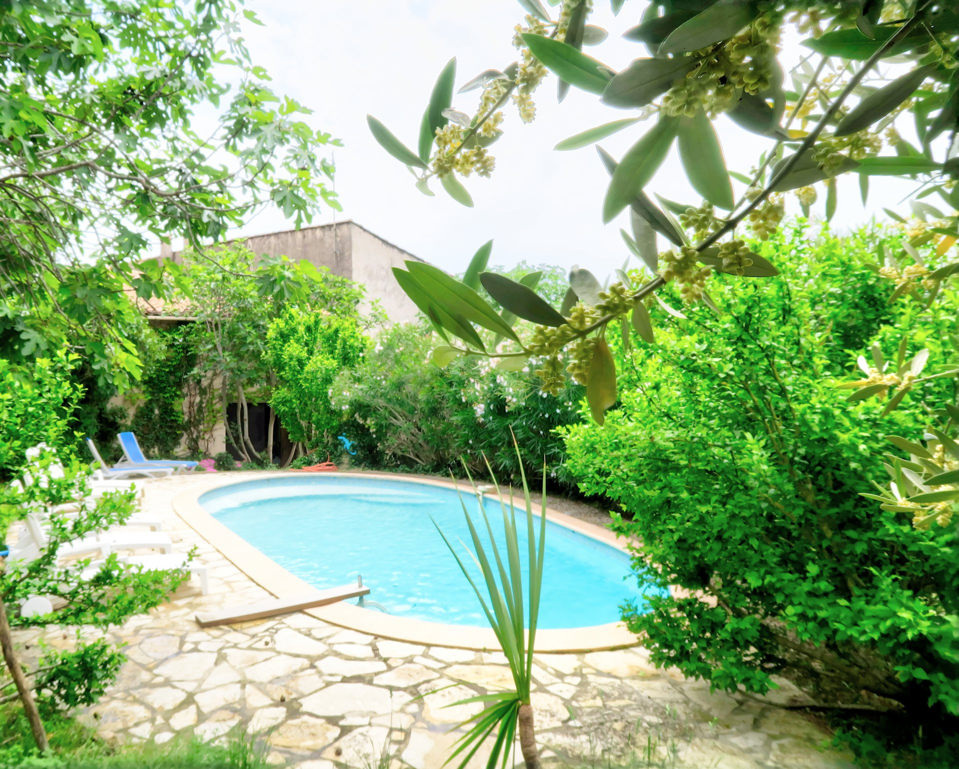 Charming Bastide with pool and garden in the heart of the village