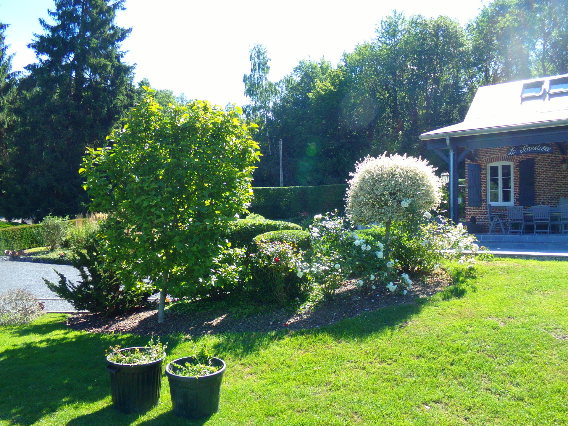 Très belle propriété avec étang sur 6 hectares.