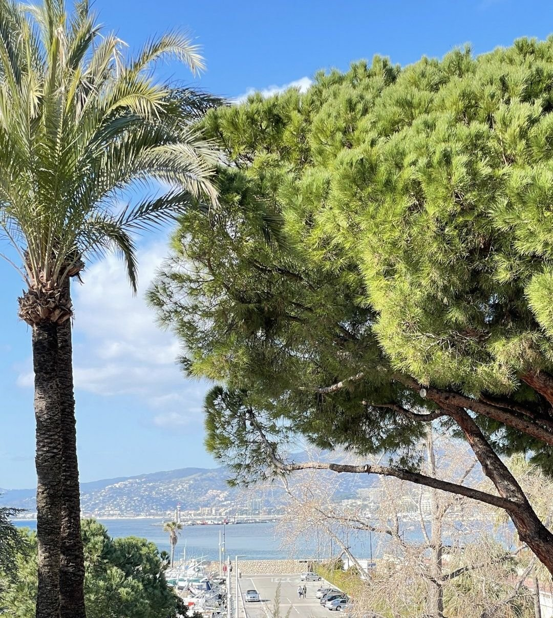 Cannes Croisette Renovated 3-BR apartment Sea View