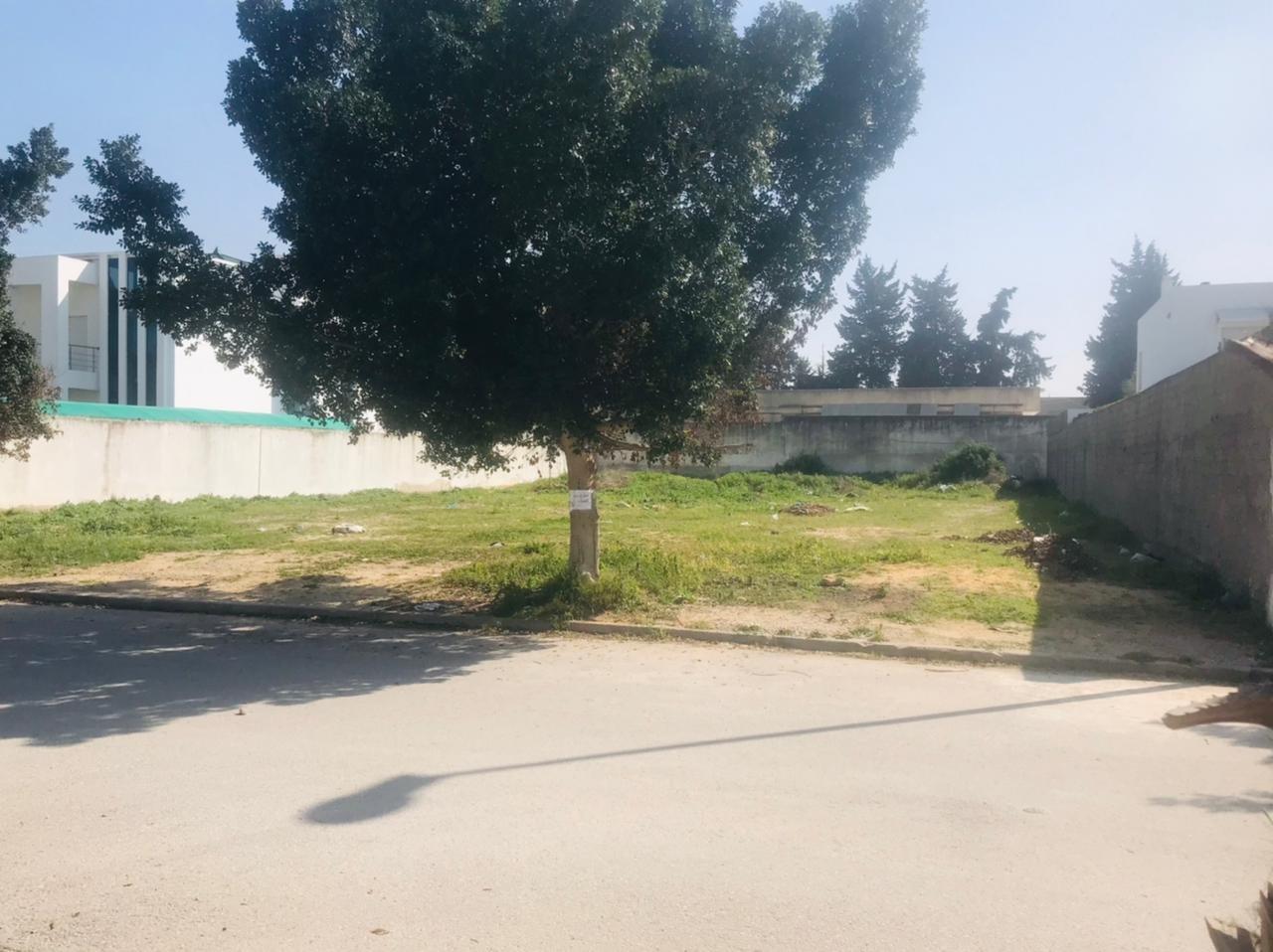 A vendre un terrain de 1013m² a la Soukra