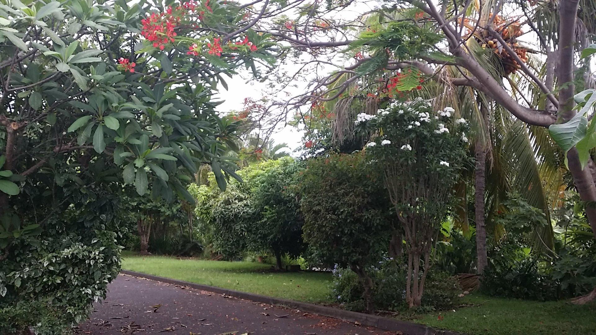 Rental Apartment - Punaauia - French Polynesia