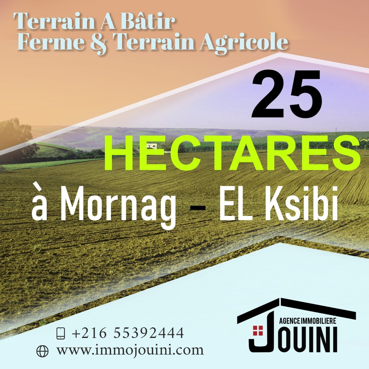Terrain Agricole 25 Hectares A Mornag Ksibi