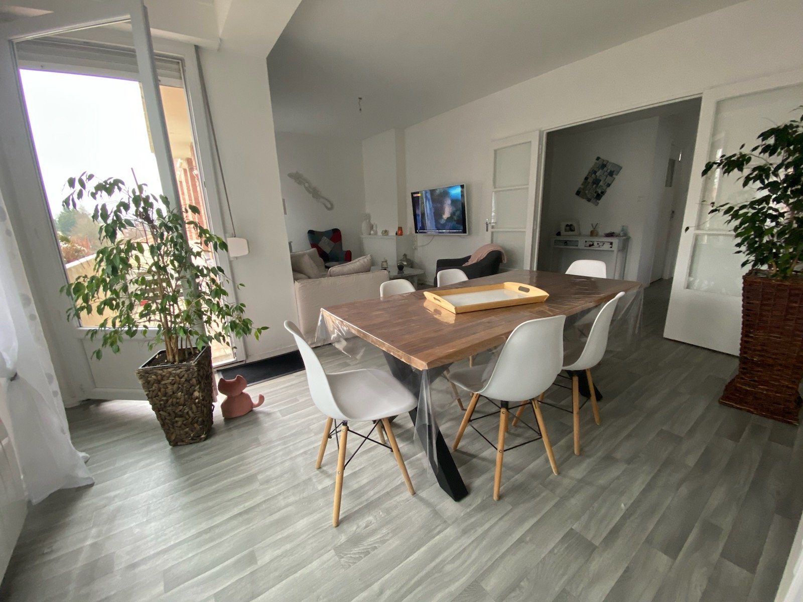 Grand appartement lumineux