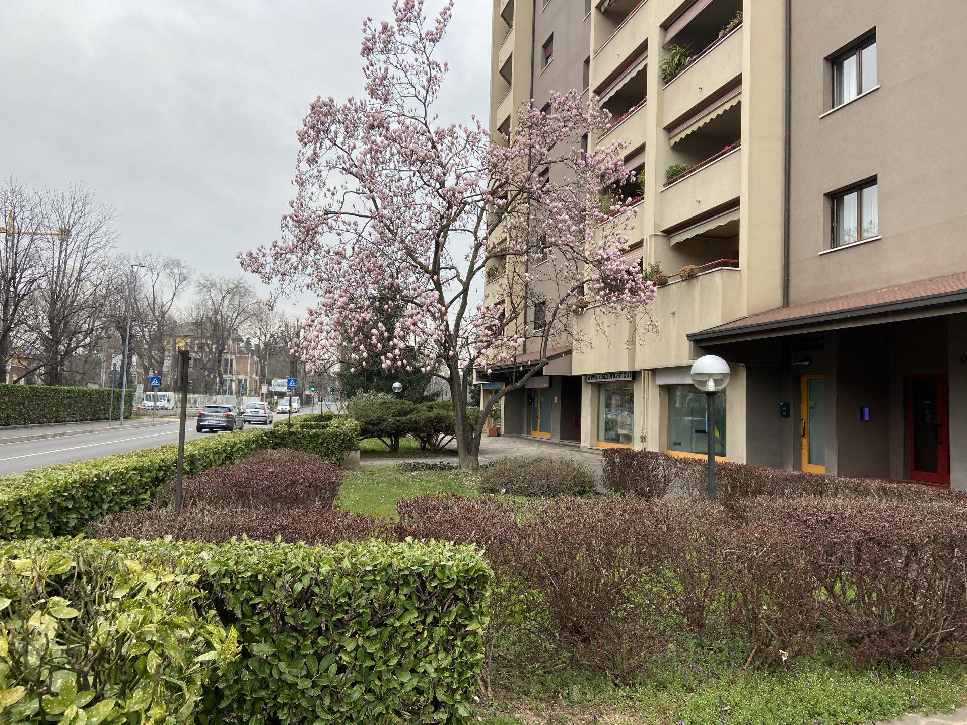 Monza - Via Ticino 17 - NEGOZIO/UFFICIO