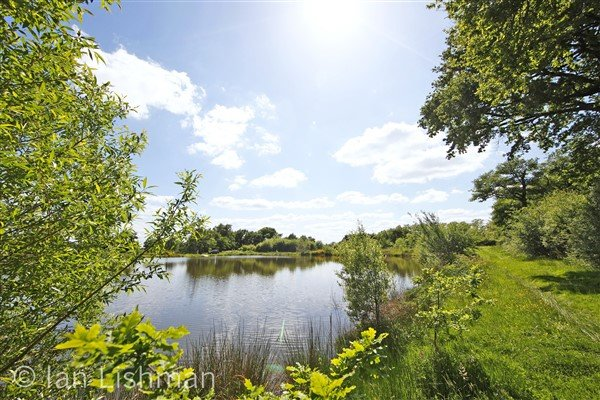 Carp Lakes with 3 Houses for sale Near Confolens - Vienne