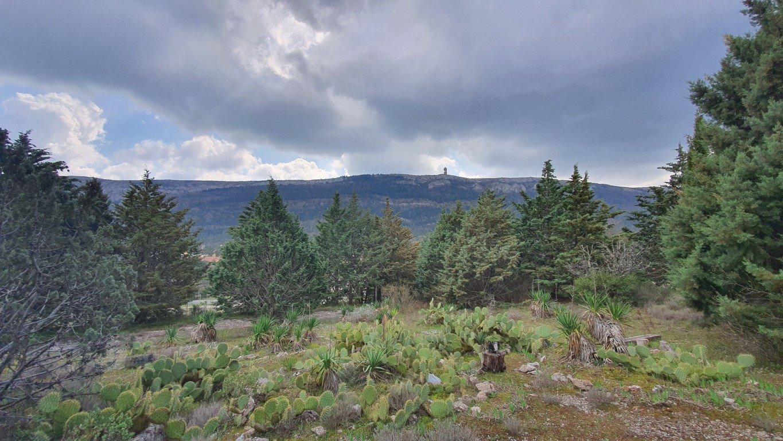 Terrain de 1324 m² plein sud vue panoramique