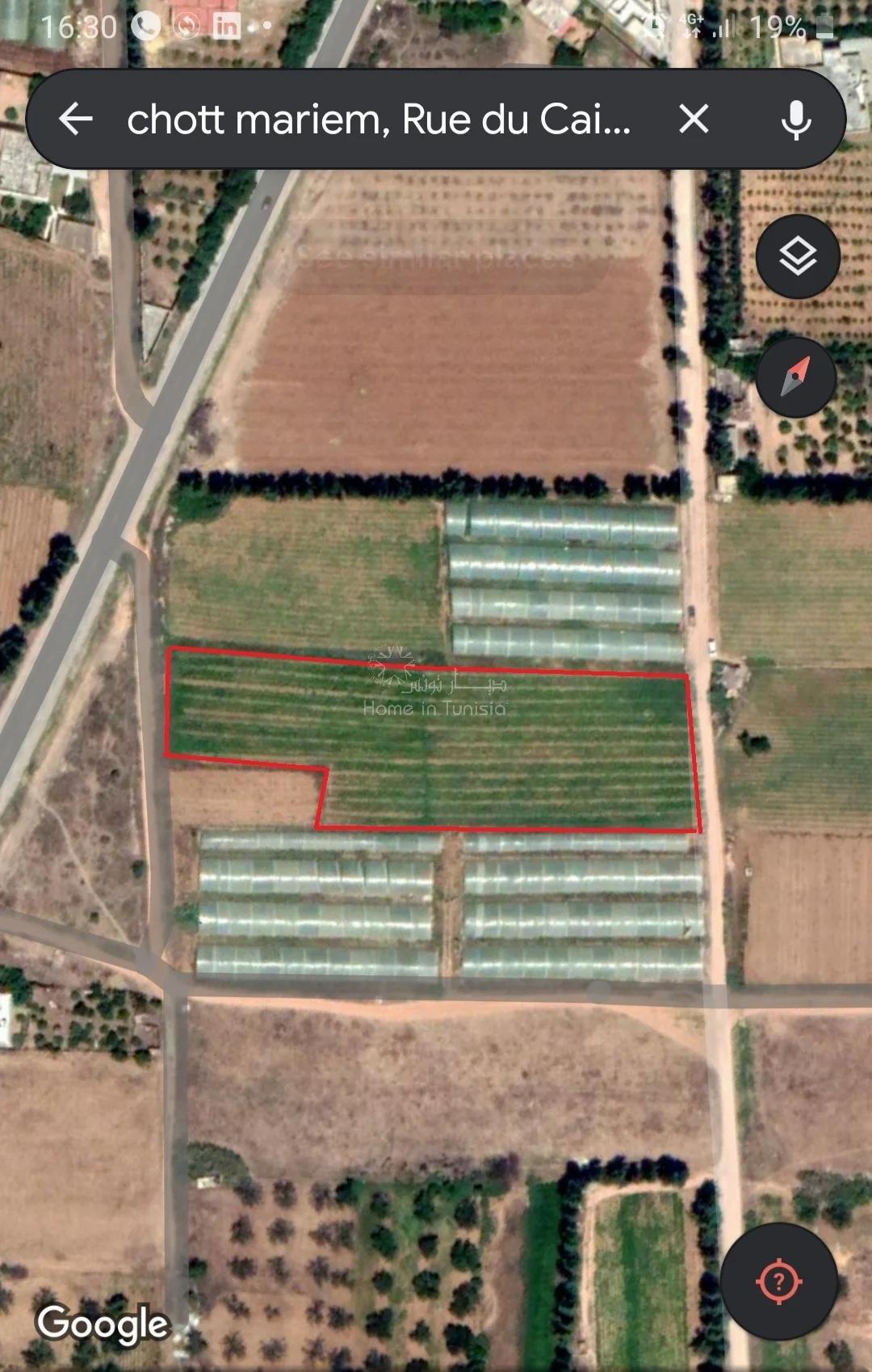 Terrain agricole a Chatt Meriem