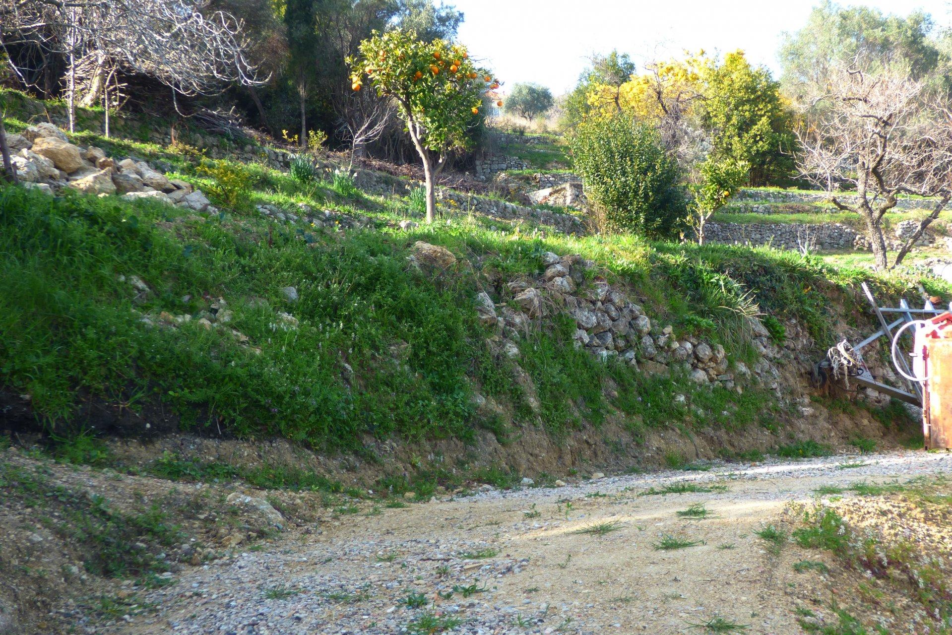 Vallauris dans les Alpes-Maritimes beau terrain à vendre.