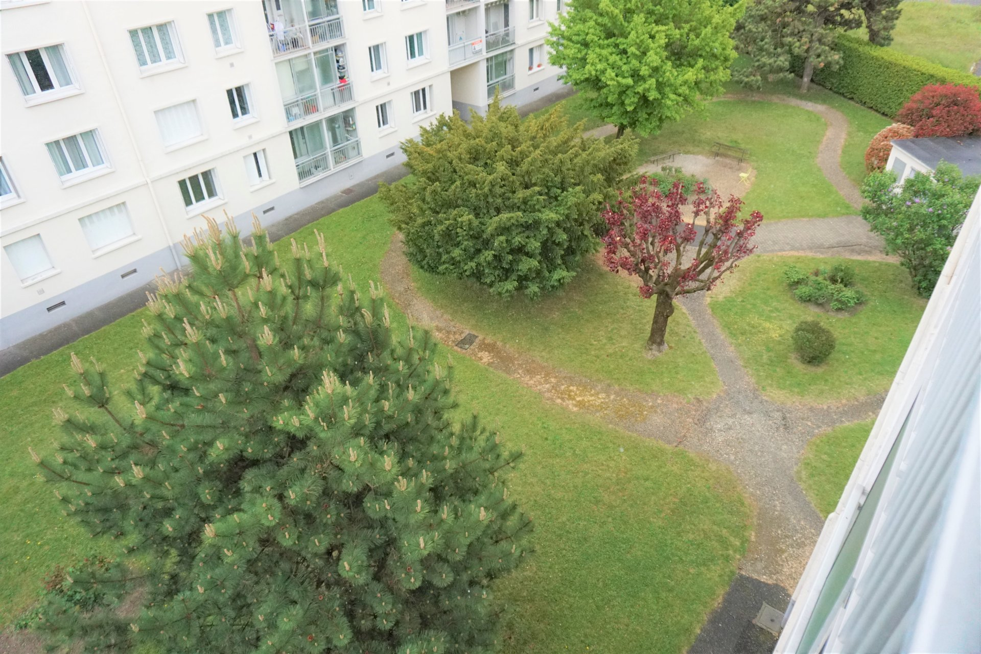 Le jardin, vue de l'appartement