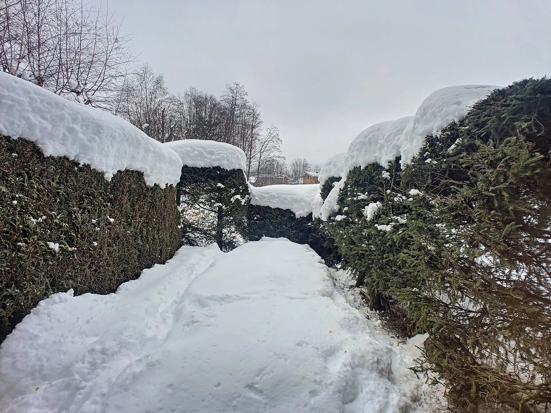 Studio giardino, Chamonix-Mont-Blanc