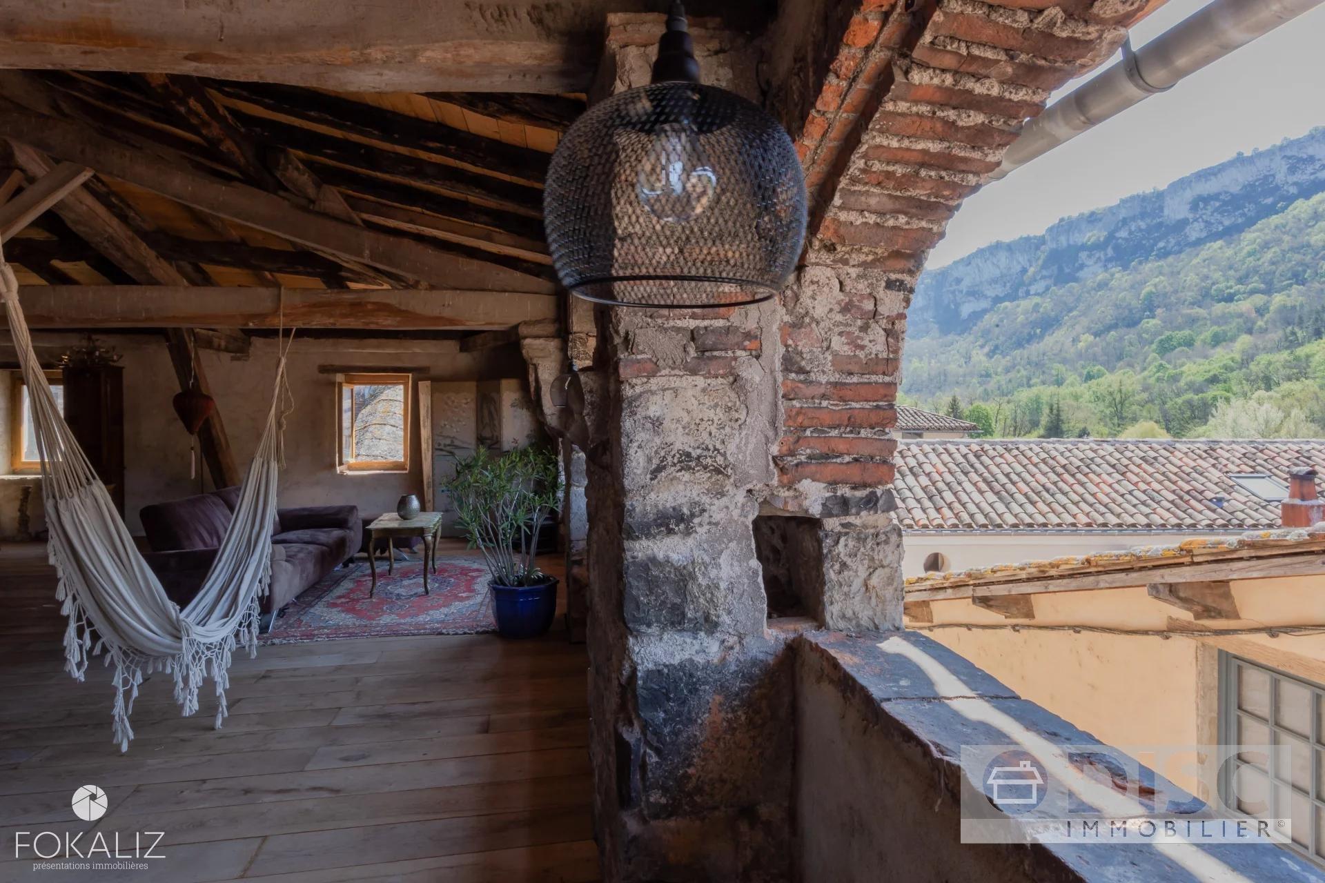 Spacieuse maison de village avec local commercial et cour intérieure.