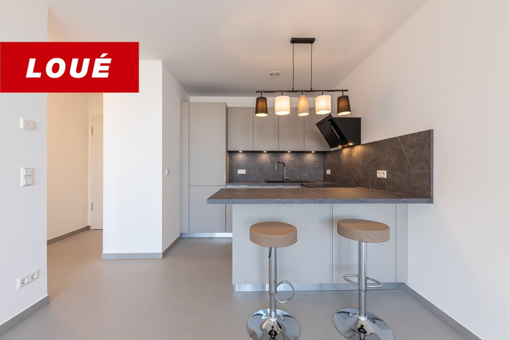 RENTED - new apartment with 1 bedroom in Luxembourg-Gasperich