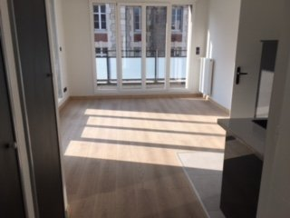 T3 Centre Ville DIJON avec Grande terrasse de 30 m²