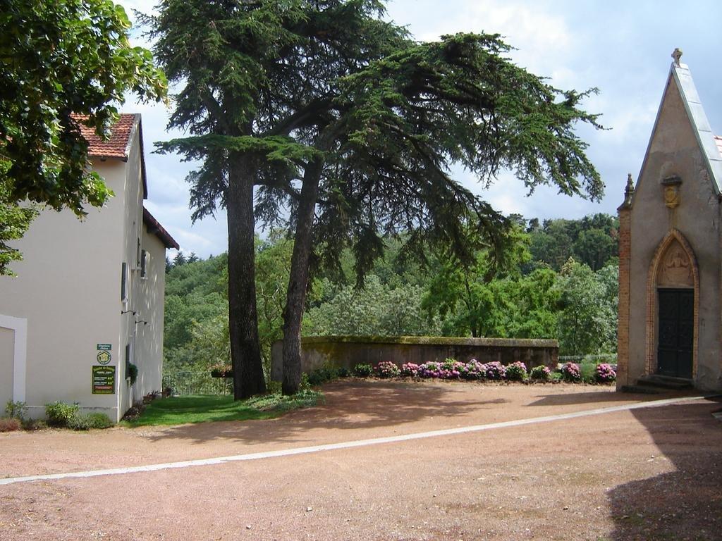 Roanne propriété sur 4ha avec vignes