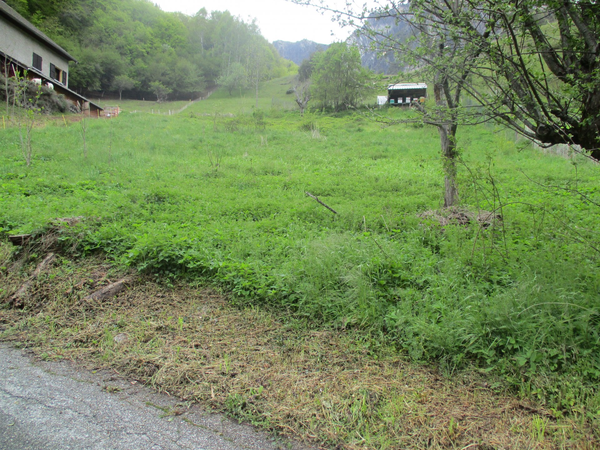 terrain 1485 m²