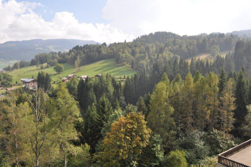 marvelous view Mont-Blanc - COMBLOUX