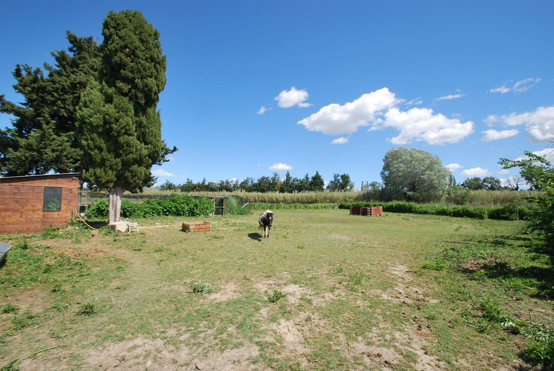 Villa avec piscine et grand jardin