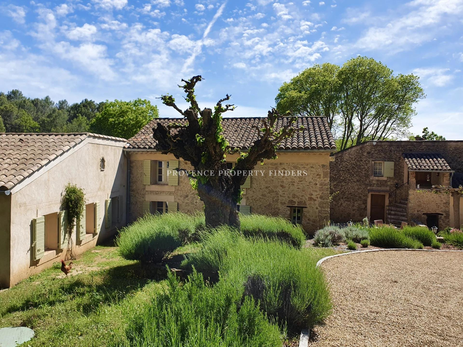 Old renovated farmhouse, 5 bedrooms, guest rooms, heated pool. Perfect location