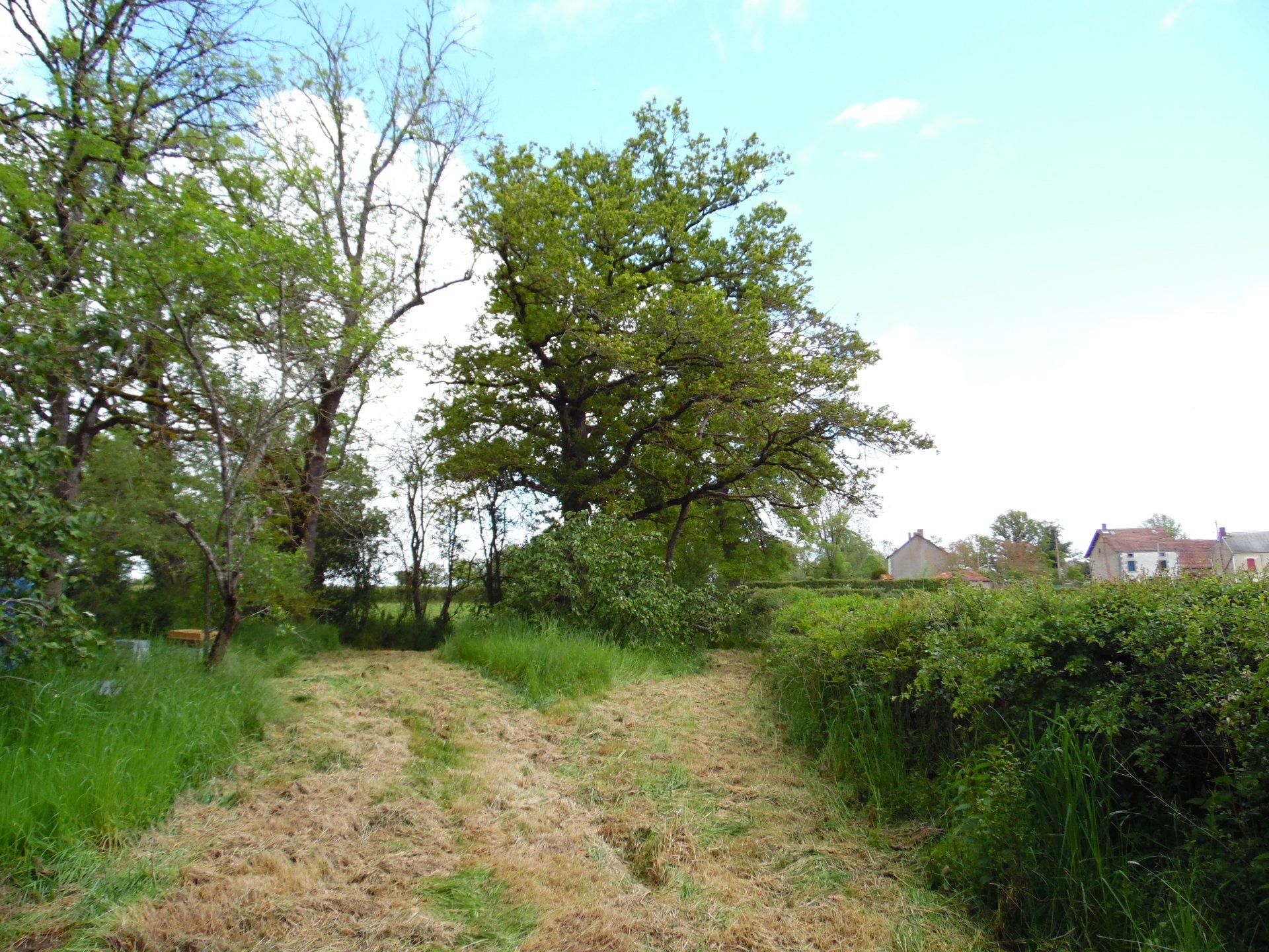 Haus mit Scheune und land zum verkauf in der Creuse bei Ahun