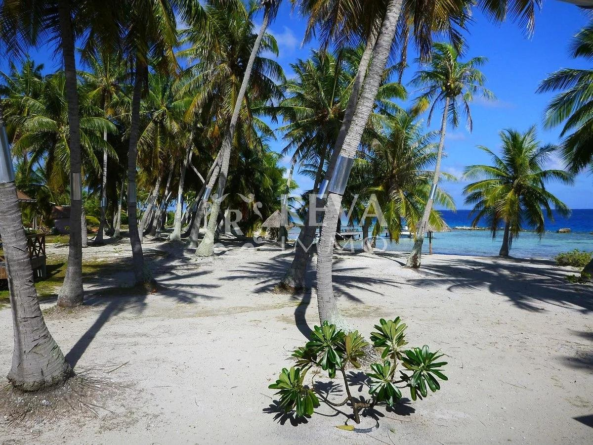 Sale Business assets - Manihi - French Polynesia