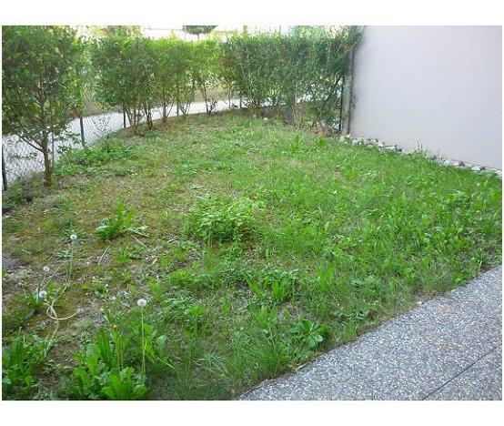 Location T2 Rez-de-jardin SIERENTZ