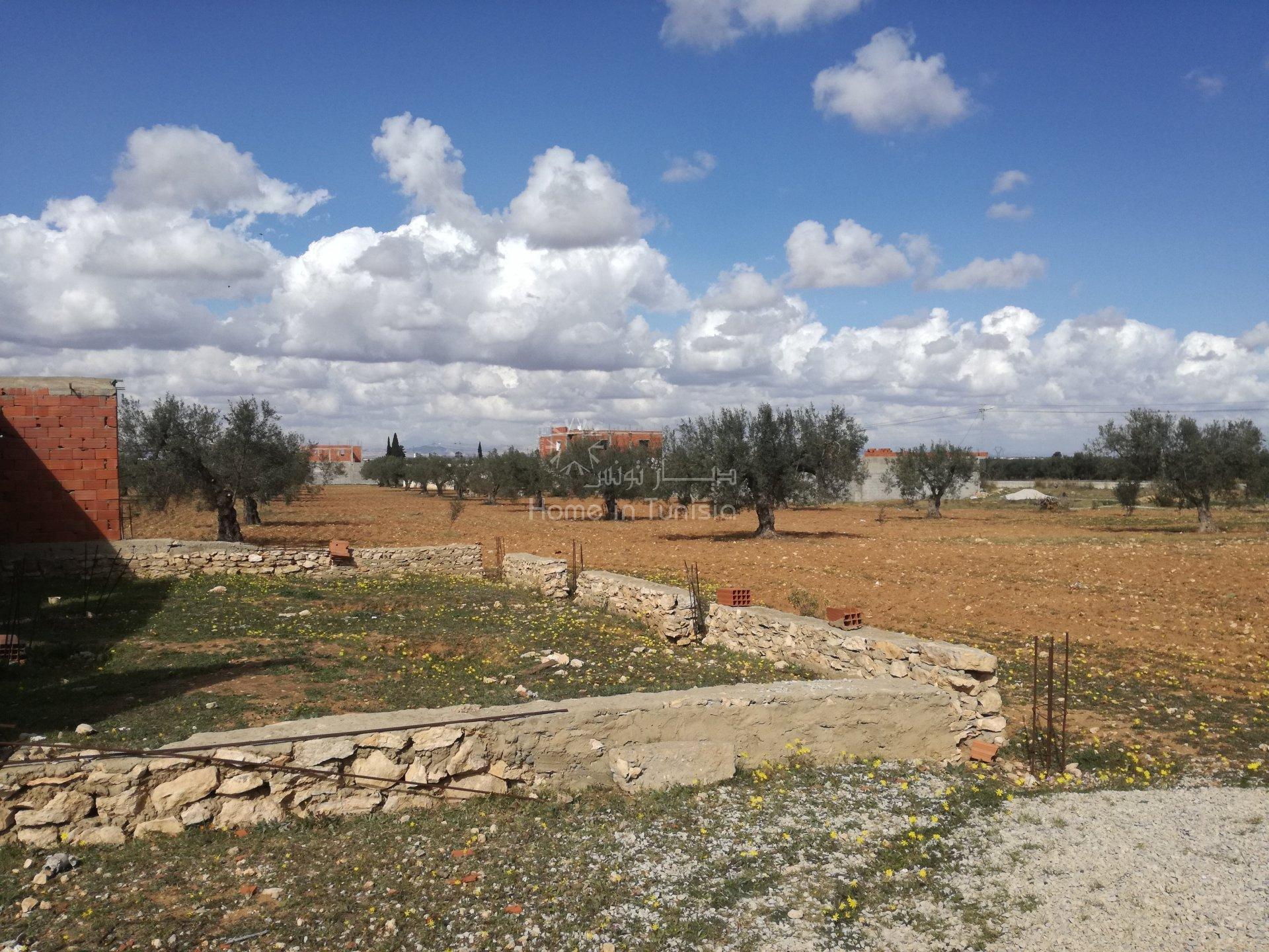 terrain agricole avec maison