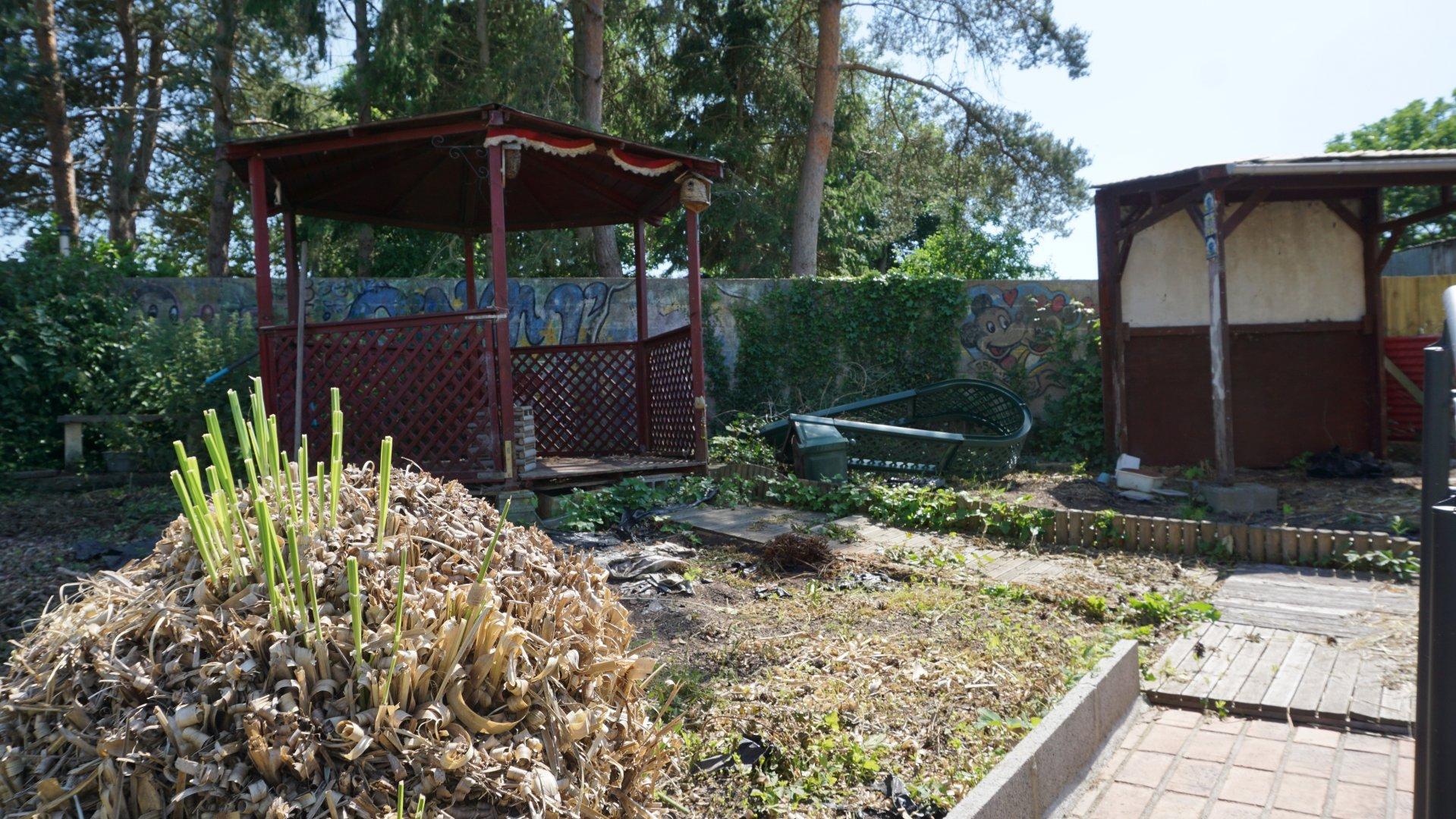PAYS D'AUGE CALVADOS Livarot une maison de ville avec un jardin