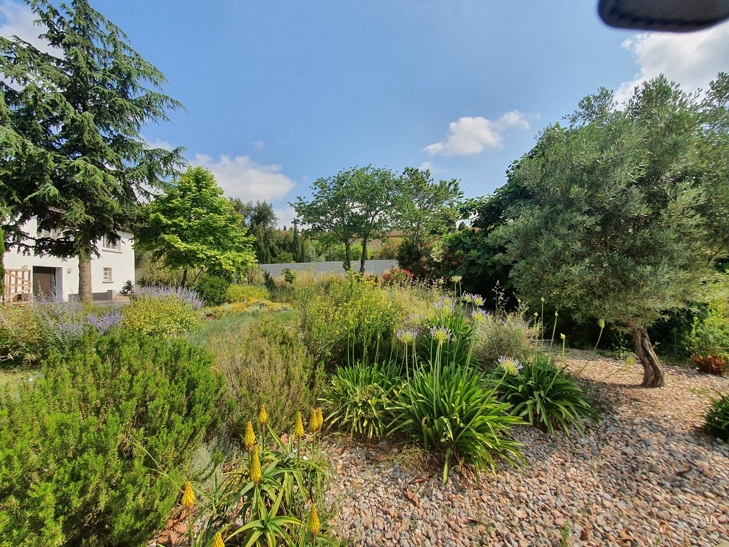 Hus med pool och en fantastisk utsikt över vinfälten