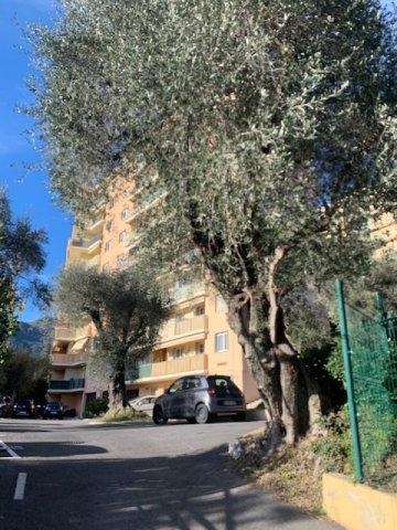 QUARTIER Suillet- T3 traversant de 55.60m² avec balcon - vue dégagée sans vis-à-vis- Calme- place de parking à la location