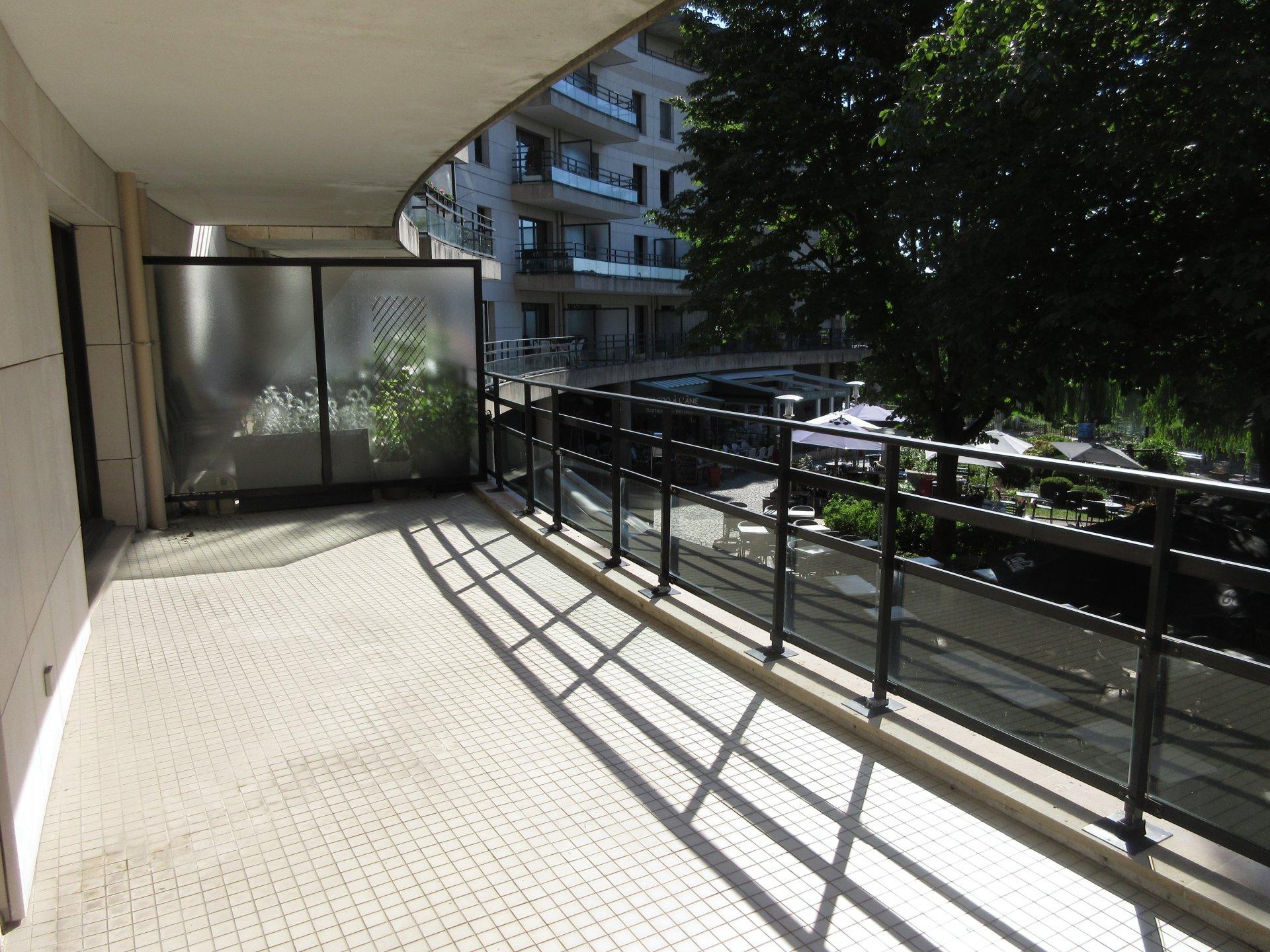 Vue sur Seine, à 5 min à pied du RER  avec grande terrasse.