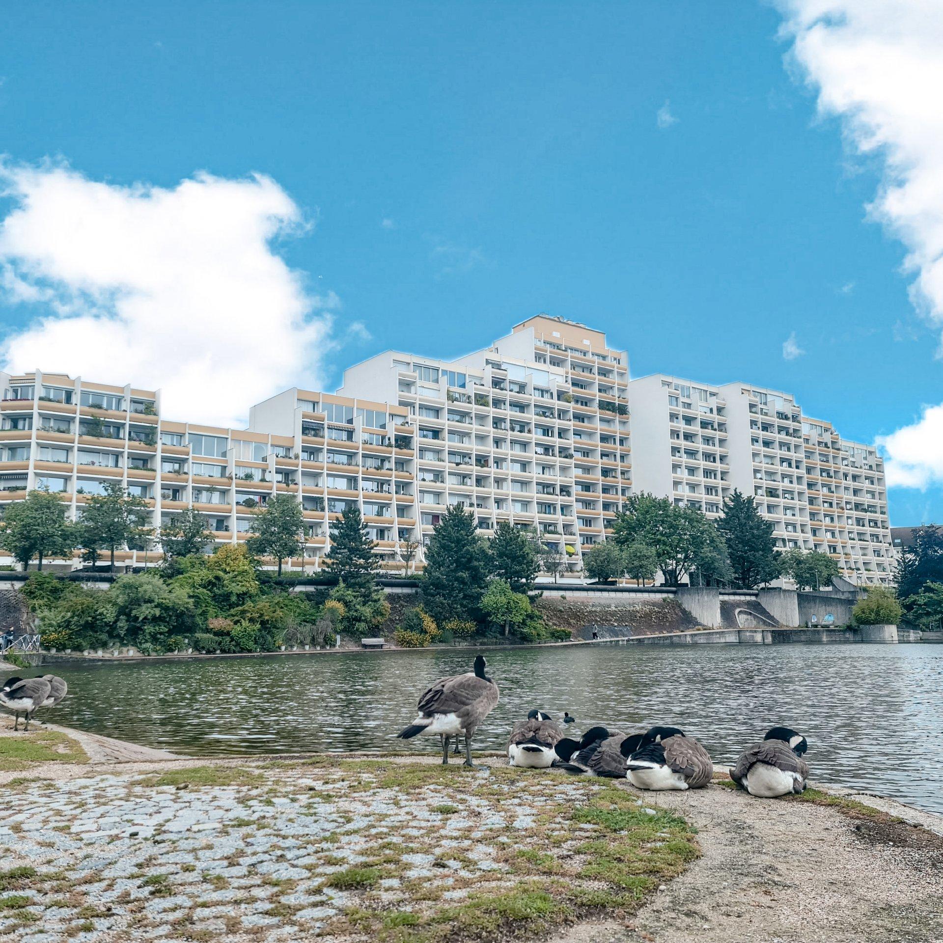 Appartement F2 avec BALCON vue sur le lac