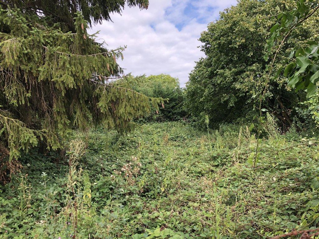 Sale Plot of land - Somain