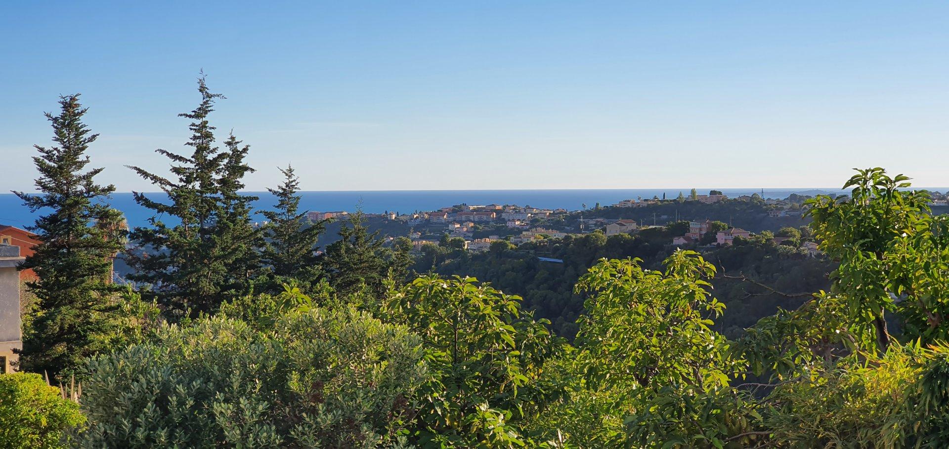 Vendita Villa - Nizza (Nice) Saint Pierre de Féric