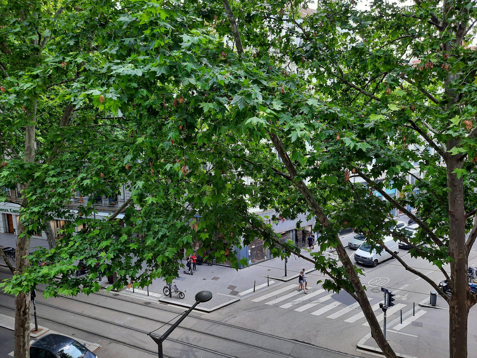 Achat Appartement Surface de 56.33 m²/ Total carrez : 55 m², 2 pièces, Lyon 3ème (69003)