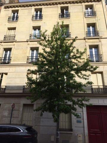 Vente Appartement - Suresnes