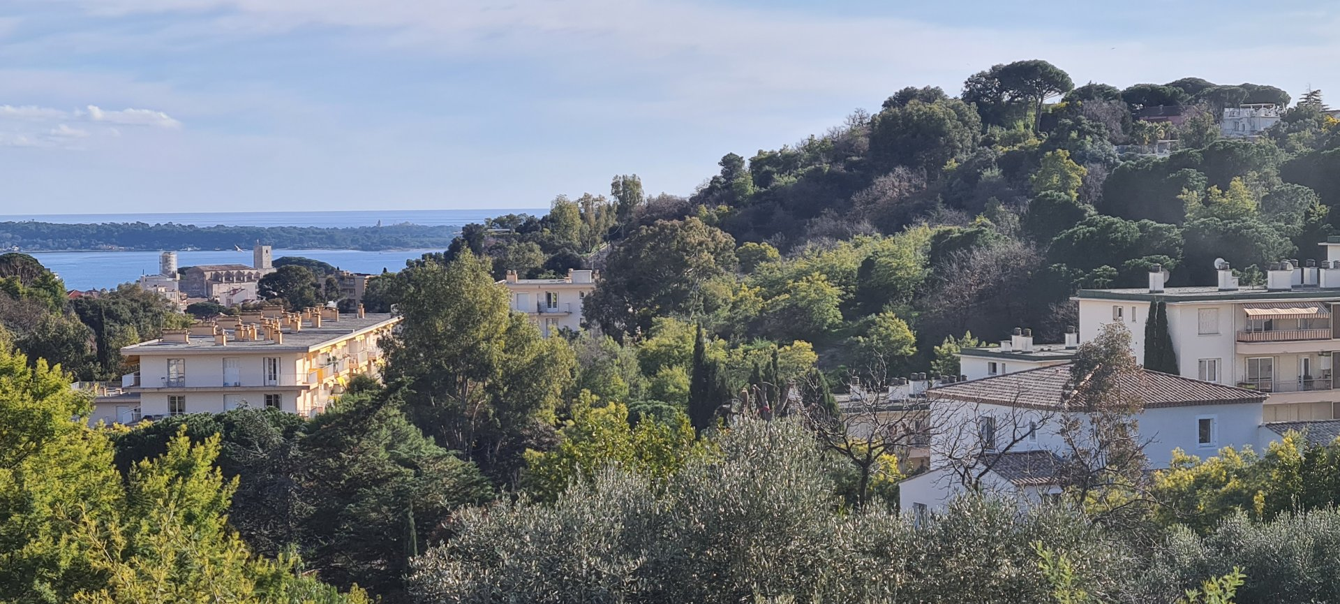 Property with sea view for sale in Cannes