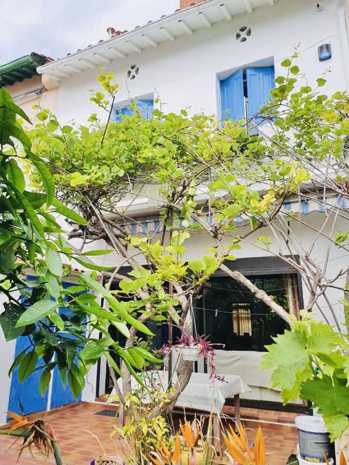 Villa familiale avec jardin arboré - St Martin