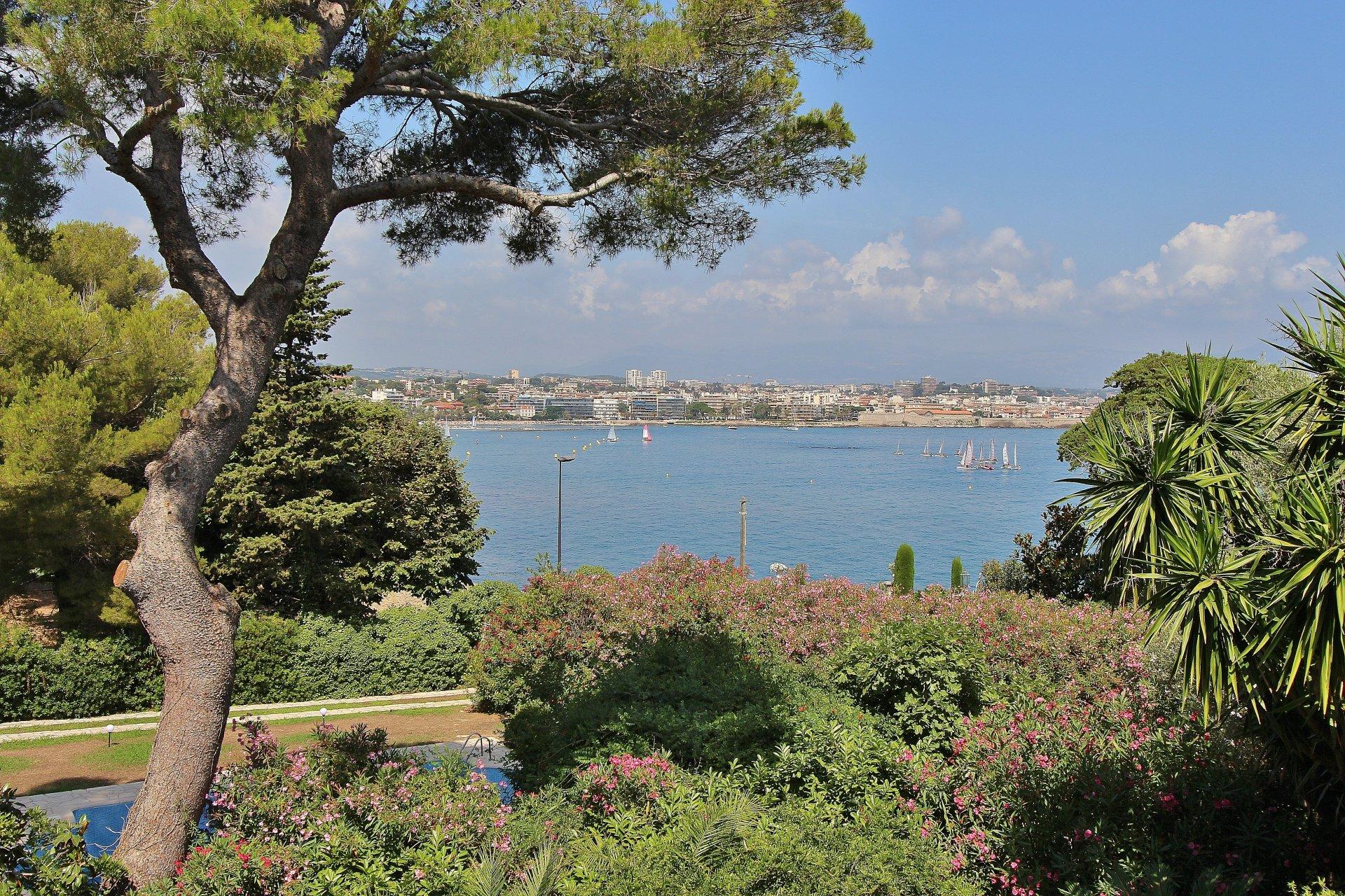 Cap d'Antibes Salis - Ville for sale - Sea view