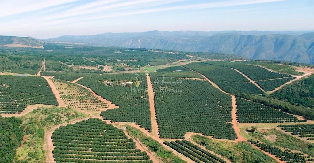 Projet Agricole Prometteur